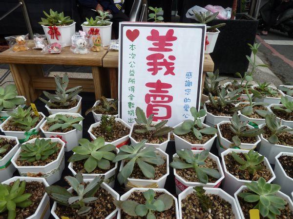 義賣作品賞心悅目P1260092.JPG