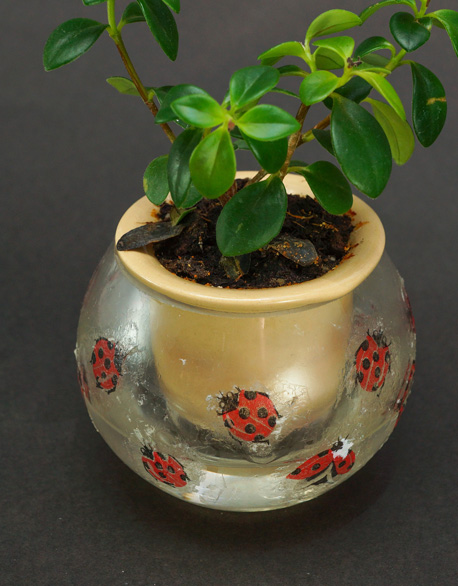 Butterfly Mojitos 3-inch ball basin